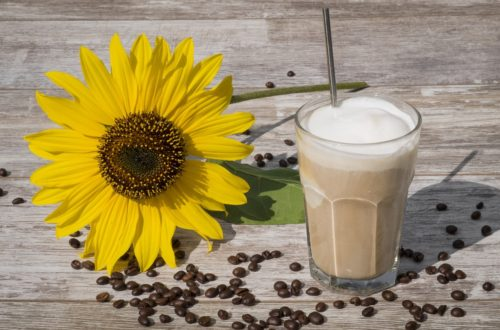 menta kafa